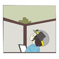 雨漏りやカビの発生、害虫被害を確認